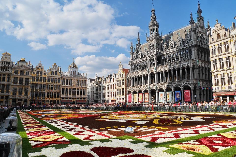 stage ville de Bruxelles