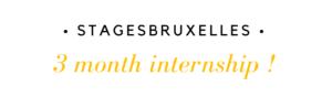 Stage 3 mois Bruxelles