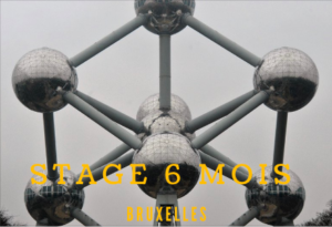 Stage 6 mois Bruxelles